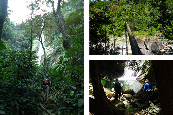 Half day hiking to el Bejuco waterfall in Pico Bonito national park