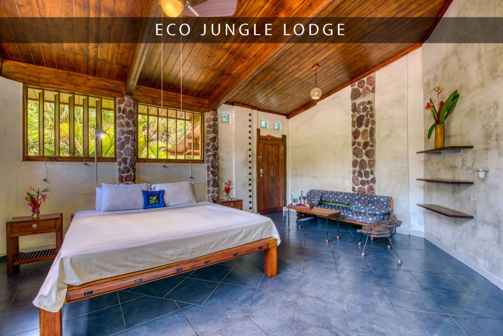 beautiful accommodation in omega eco jungle lodge
