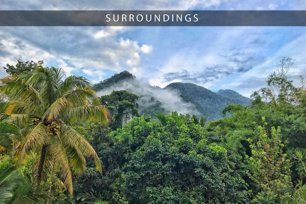 pico bonito national park in honduras with omega tours